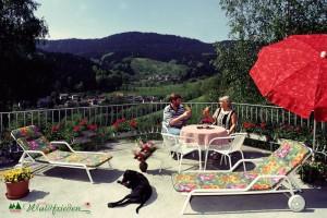 0201waldfrieden_terrasse